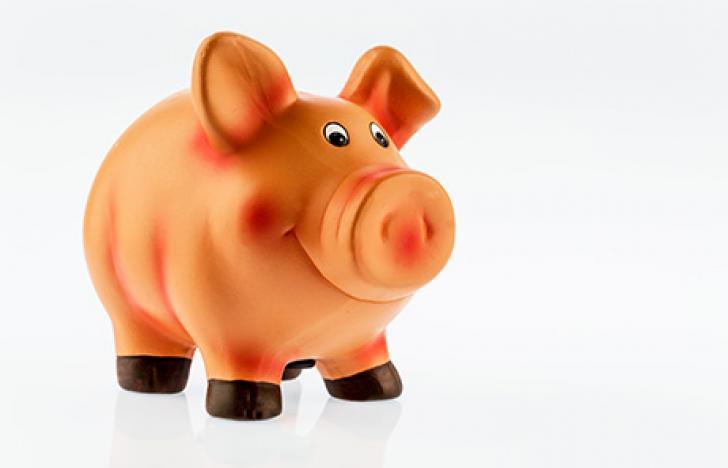 Krisensicheres Sparen fürs Enkerl
