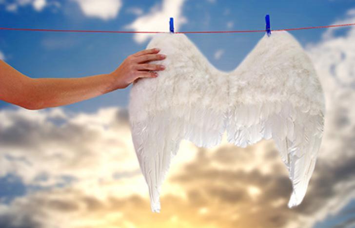 Saubere Wäsche dank innovativer Logistik