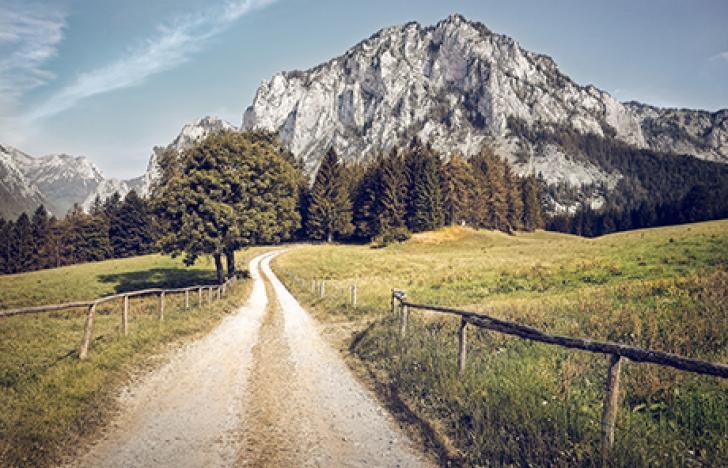 Innovationsvorsprung für den Standort Österreich