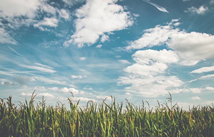 Vernetzte Cloud-Anwendungen für sichere Produktionsumgebungen